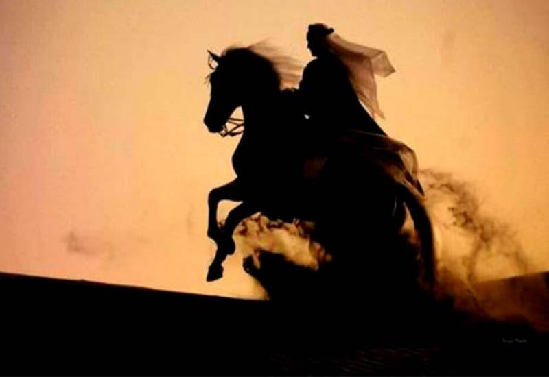 Horse riding in Dubai