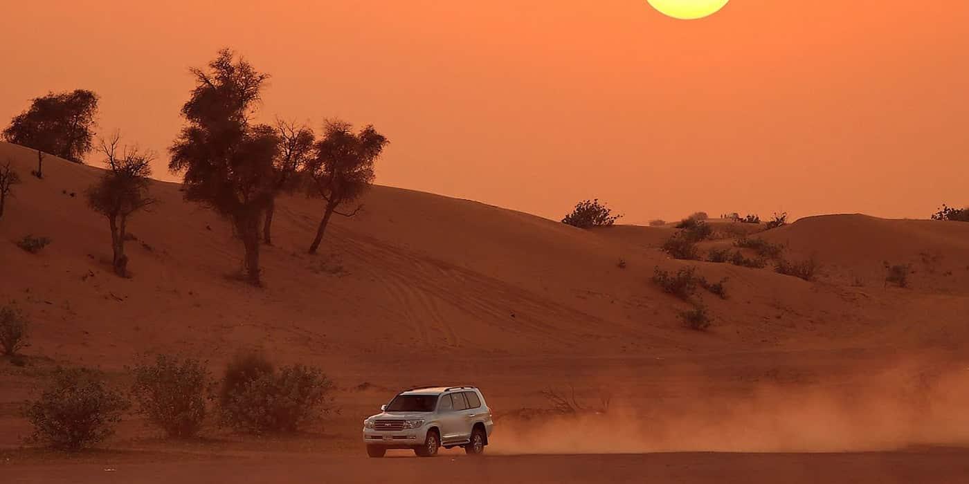 Skyland Tourism Desert Safari